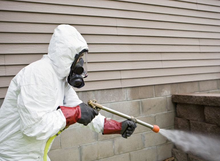 Why You Must Use Pest Control Services In Your House